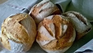 Exploiting bread to bring communities together